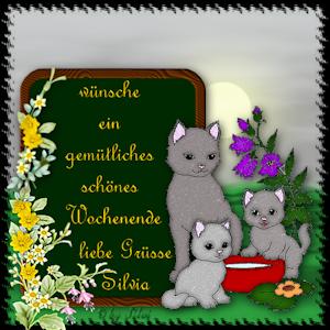 An den Beitrag angehängtes Bild: https://www.silvisch.de/gallery/we2021_cjb9tt6t.png